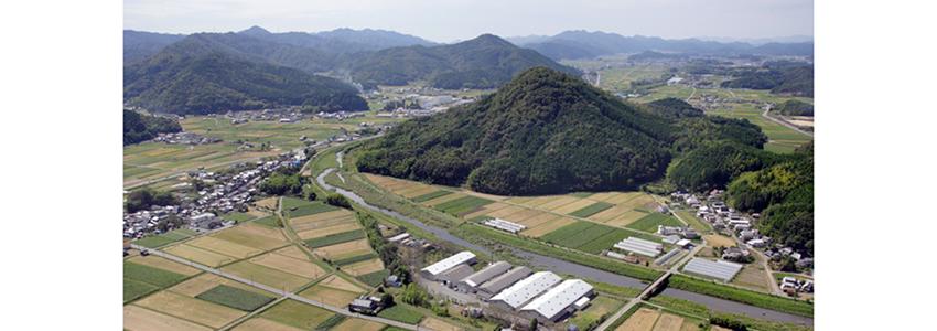 櫻酒造航空写真